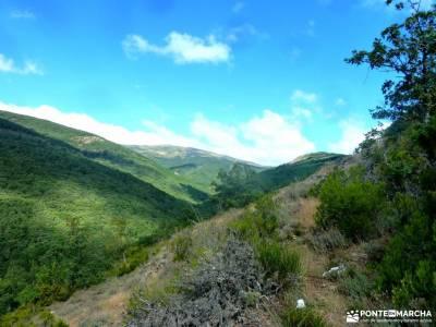 Hayedo Montejo-Cuerda Pinilla; arribes del duero senderismo viajes organizados desde madrid senderis